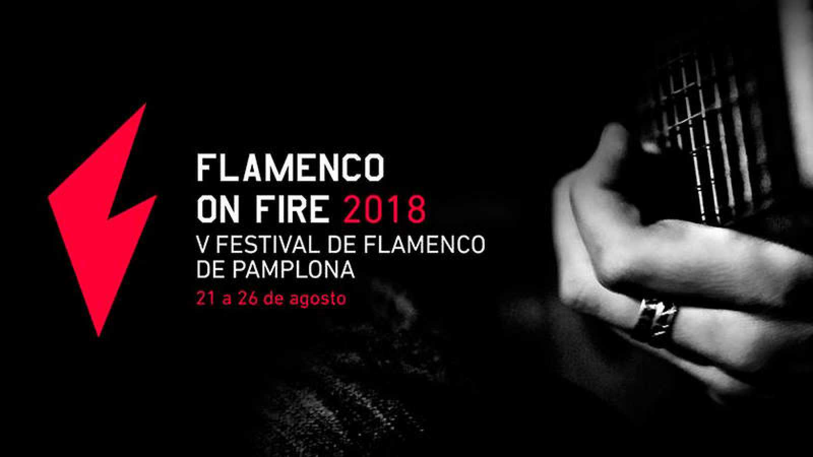 flamenco-on-fire